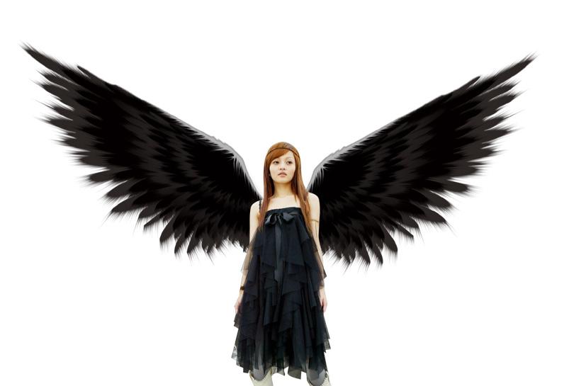 千图网是专注免费设计素材下载的网站,提供天使翅膀ps素材,天使翅膀
