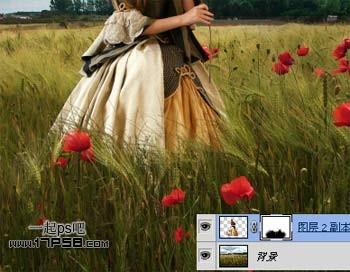 PhotoShop合成麦田里视频闻香美女手持的玫瑰妖变效果美女蛇图片