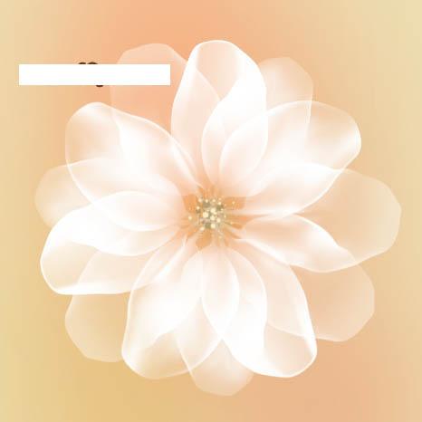 白色透明花朵教程  〔最终效果: photoshop到底怎么添加字体的啊?