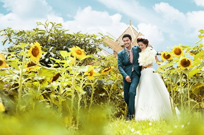 婚纱照片--ps素材 ps背景 人物 花草 园林 山水 猫猫