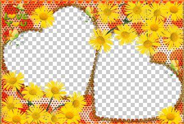 png   白色毛边心形相框高清图片素材.
