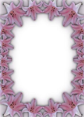照片模板.紫色百合花照片边框模板.psd