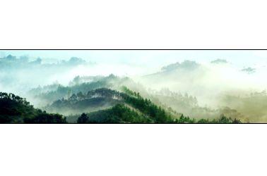古风竹林风景高清图片素材下载