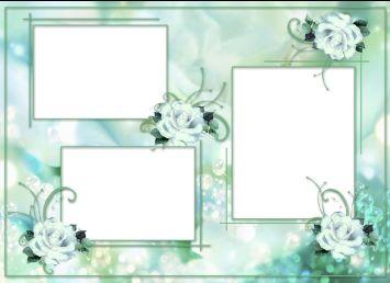 png   小花剪贴相框高清图片素材