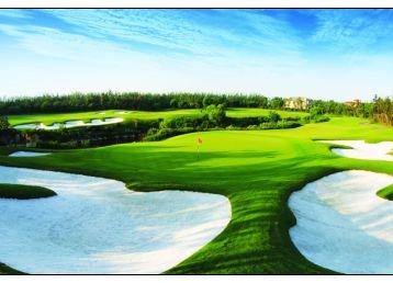 高尔夫球场风景素材图片