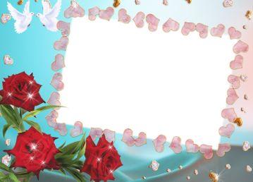白鸽玫瑰花心形边框素材图片.png