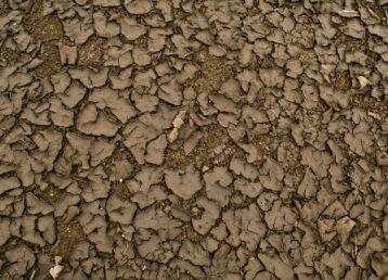 干涸的土壤材质素材图片