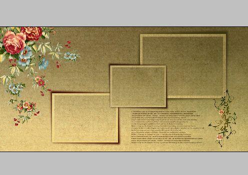 青春年華系列,寬幅2011年婚紗相冊模板,共10個小樣,psd分層格式,全部圖片