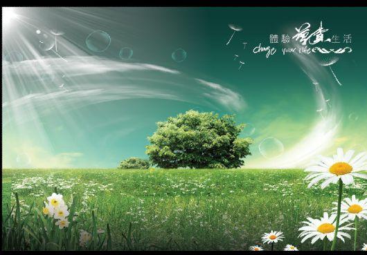 环保海报模板psd素材绿草原森林环保海报模板下载