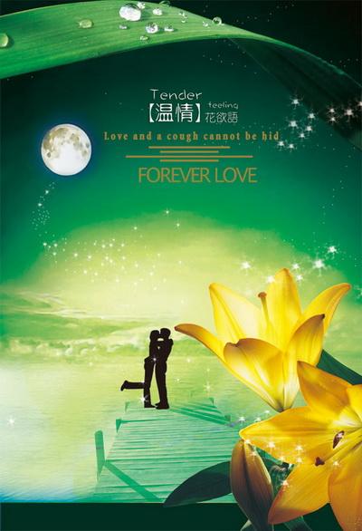 浪漫月光下情侣的情侣人物剪影盛开的百合花七夕情人节psd模板素材
