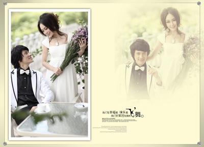 2014年最新韩式婚纱模板{2058.