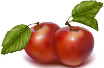 ai格式   矢量水果.可爱的樱桃蛋糕矢量水果素材.ai格式   矢量水果.