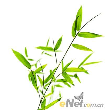 竹子风景图片手绘