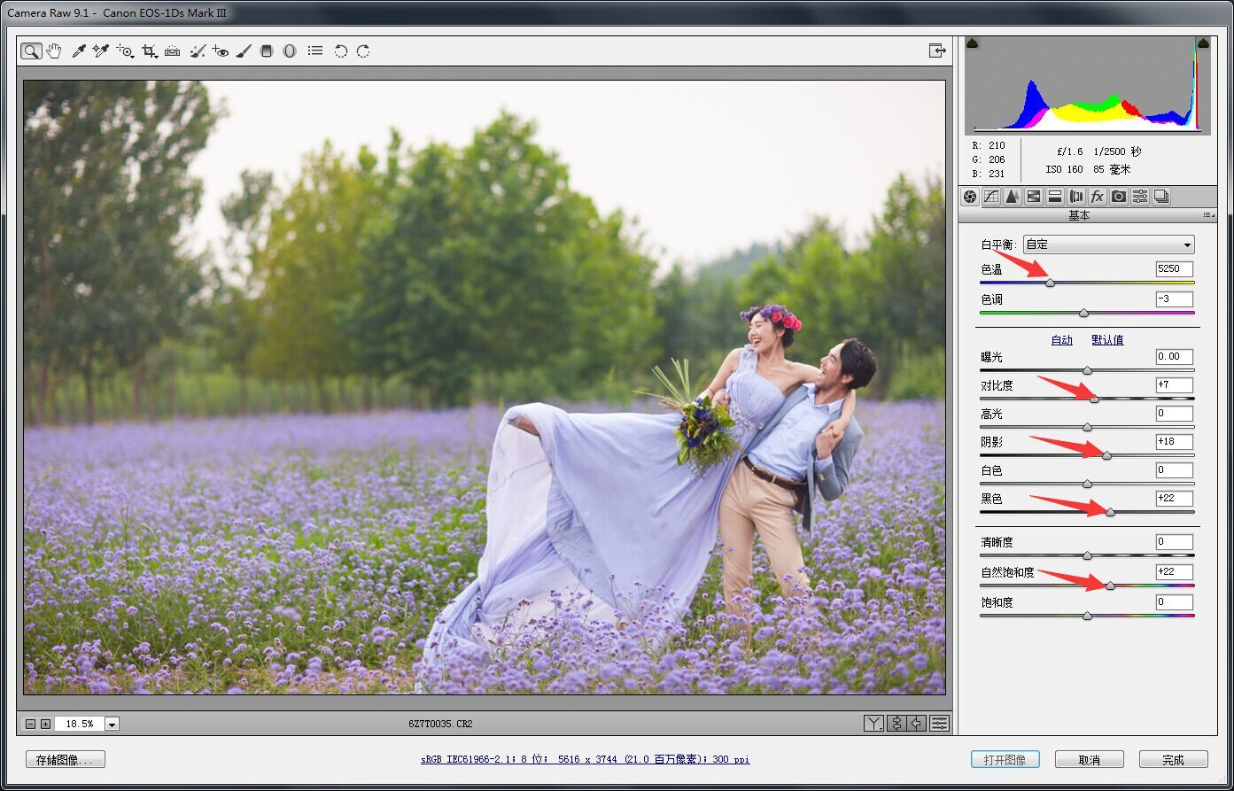 PhotoShop唯美的薰衣草花海婚纱照外景后期影楼调色教程