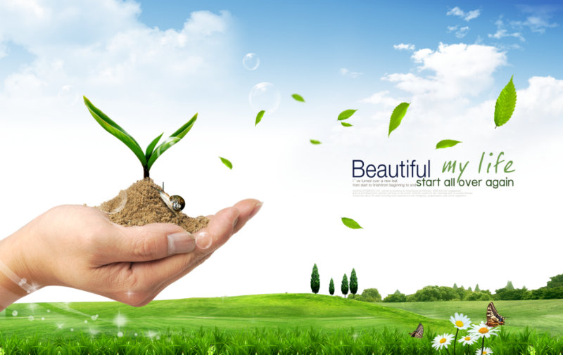 手捧着的绿芽图片素材蓝天下的草地背景教育主题韩国psd素材下载 [中国PhotoShop资源网|PS教程|PSD模板|照片处理|PS素材|背景图片|字体下载|PS笔刷下载]