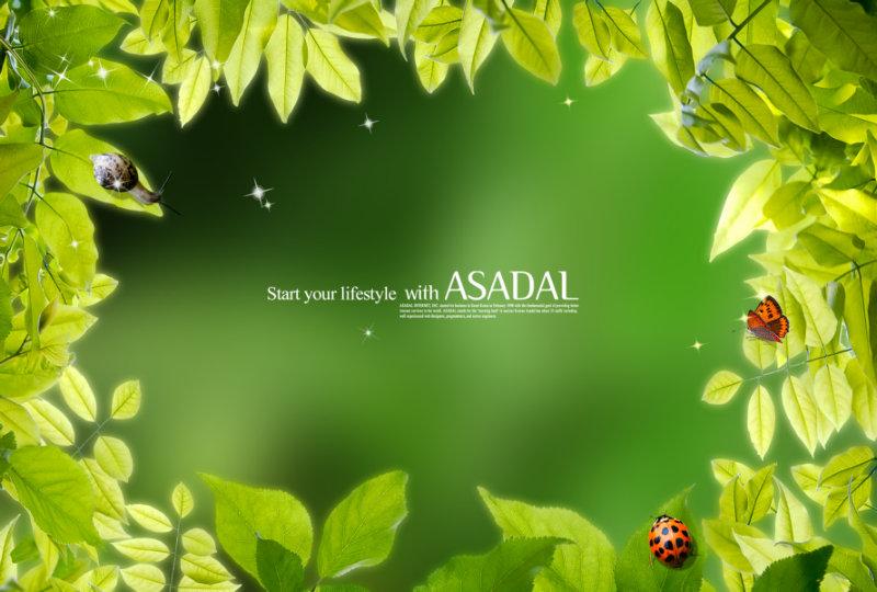 树枝树叶围成的绿色相框背景psd素材打包下载