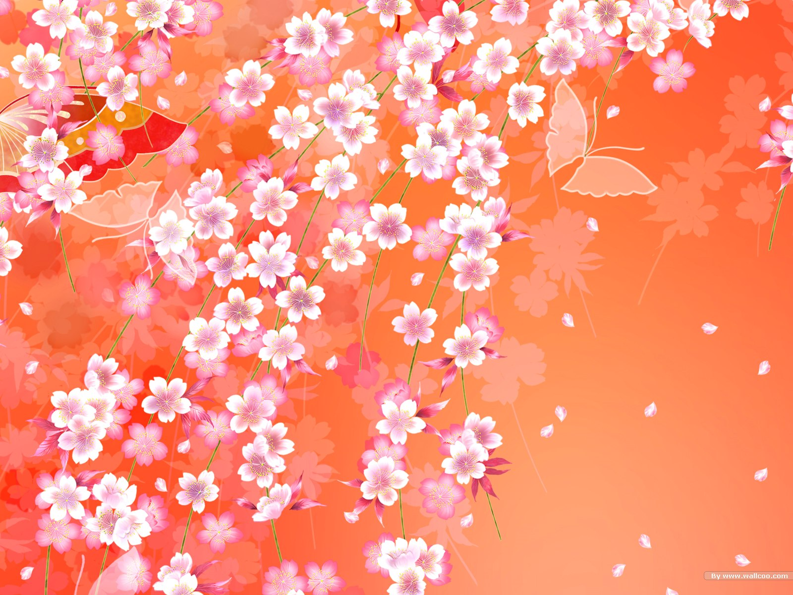 日本樱花蝴蝶扇子背景图片素材(23p)[中国photoshop