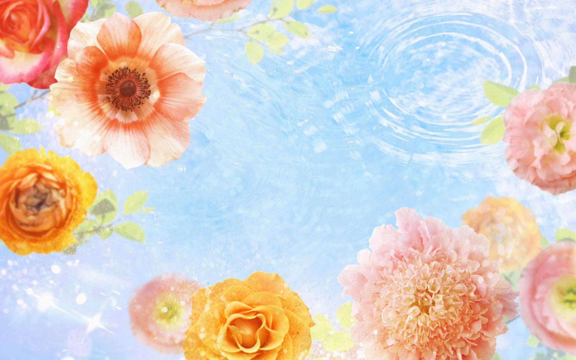 设计常用的花朵高清背景图片PS素材(32P)