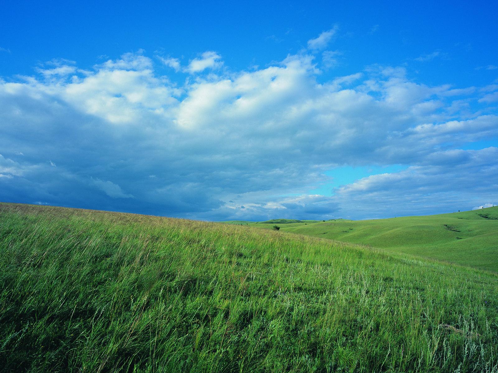 夏日茫茫草原绿草地蓝天白云高清图片素材 29