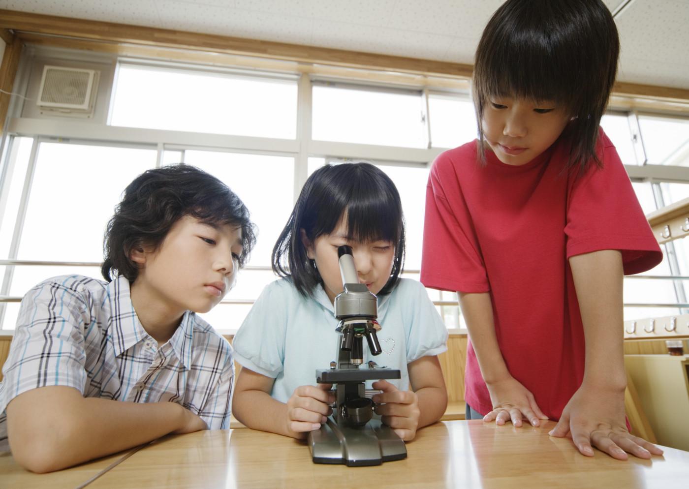 上兴趣班参加课外v图片的小学生图片图片素材(小学人物高而图片