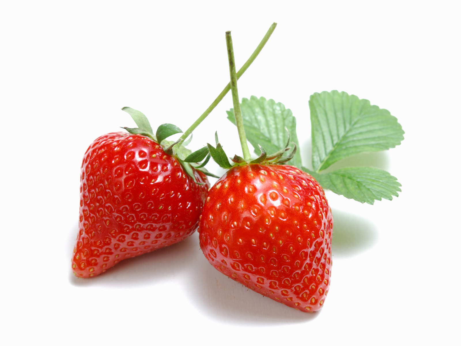 Fresh strawberry photoshop brushesh33traththaran