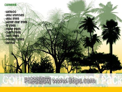 真实树木笔刷.63款各种类型的树木灌木枯木竹子等PS笔刷下载.63支