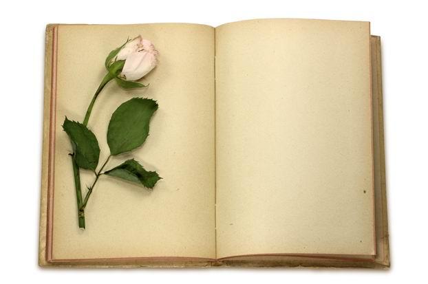 牛皮纸空白书本高清图片素材下载