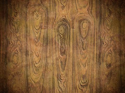 高清树木年轮纹理木纹肌理材质背景素材图片下载