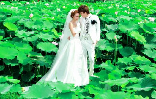 12月更新影楼婚纱相册样片幸福蔓园系列婚纱相册JPG样片免费下载一
