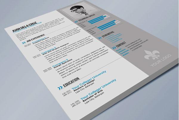 高档商务风格跨国企业求职个人英文简历模板psd素材免费下载图片