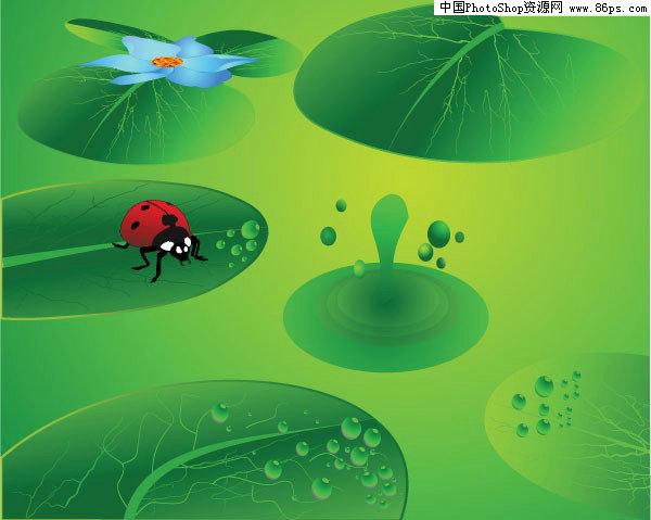 关键字:矢量背景,绿色,清凉,荷叶,荷花,池塘,涟漪,瓢虫,背景,矢量素材