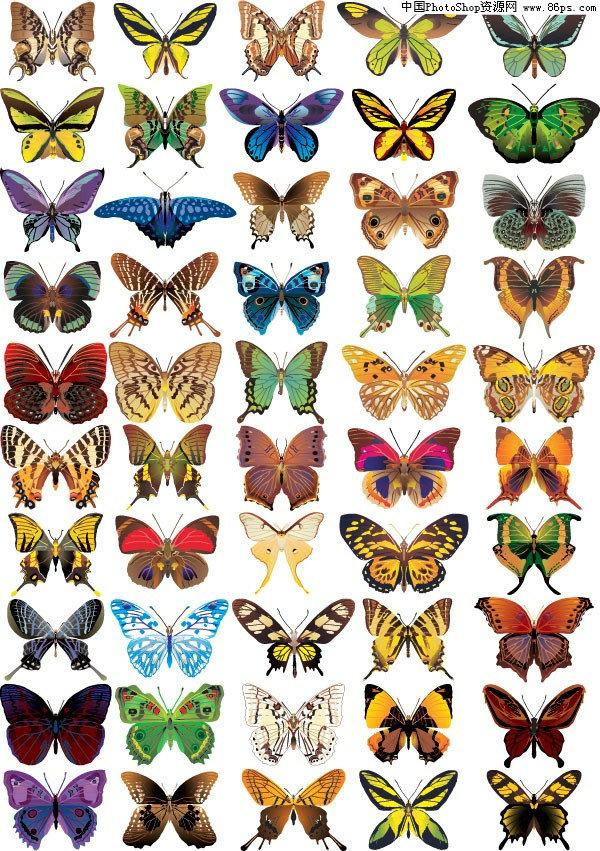 【文件大小:305 KB 更新时间: 2010-09-22软件类别:eps素材 软件语言:简体中文】 EPS格式50款漂亮逼真的蝴蝶矢量素材免费下载  EPS格式,含JPG预览图,关键字:矢量,昆虫,蝴蝶,精美逼真,彩色蝴蝶,凤蝶,矢量素材...  Twinsen EPS称为被封装的PostScript格式,它主要包含以下几个特征。   (1)EPS文件格式又被称为带有预视图象的PS格式,它是由一个PostScript语言的文本文件和一个(可选)低分辨率的由PICT或TIFF格式描述的代表像组成。   (