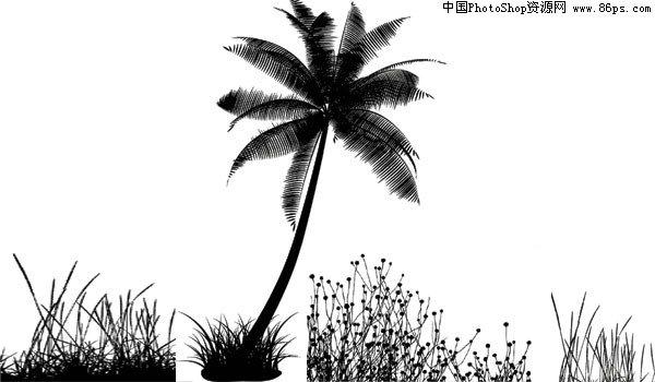 ai格式一款ai格式椰子树剪影矢量素材免费下载 [中国photoshop资源网