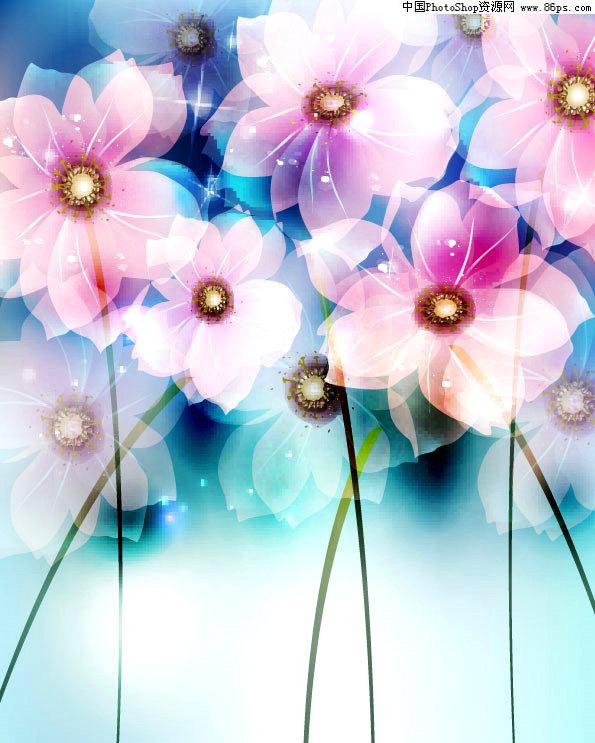 手机头像图片大全花卉