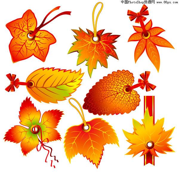 eps格式,含jpg预览图,关键字:矢量吊牌,标签,秋天,红叶