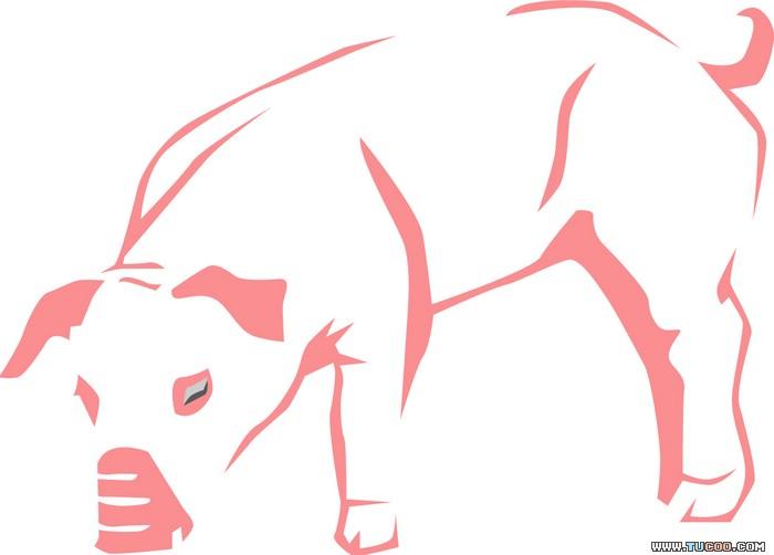 新年春节素材猪年矢量图_4.eps素材