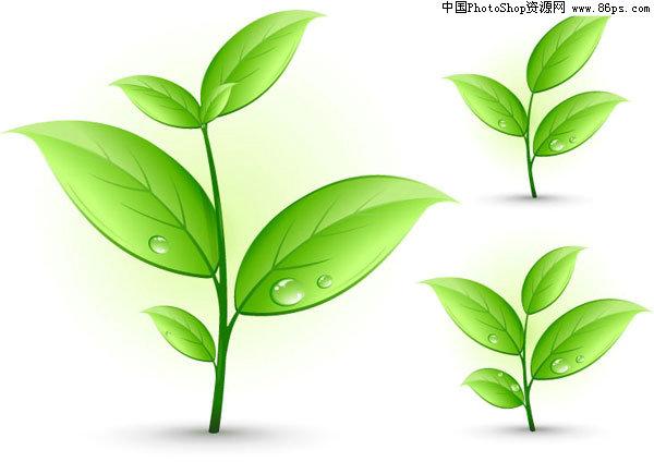 eps格式春天小草和树叶矢量素材免费下载